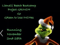 Project Grinch